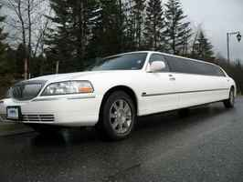Premier Limousine / Transportation Business  - 212