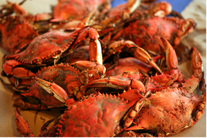 Seafood Market & Crab House in Northern Virginia!
