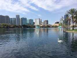 Law Firm For Sale in Orlando area