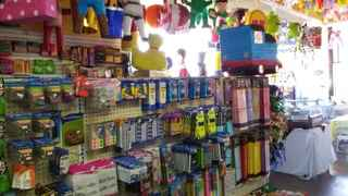 Party Rentals And Supplies