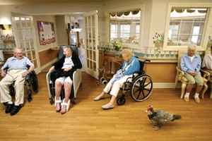 Assisted Living and Memory Care Centers