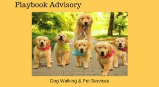 Dog Walking & Pet Services - Profitable