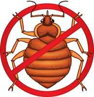 Bed Bug Extermination Company