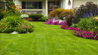 Thriving Landscaping and Retail Garden Center
