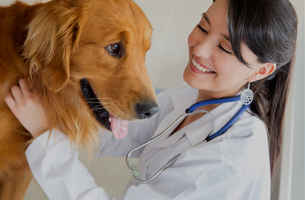 Veterinary Clinic - 100% financing available