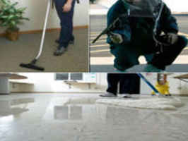 Well-Est. Profitable Commercial Cleaning Company