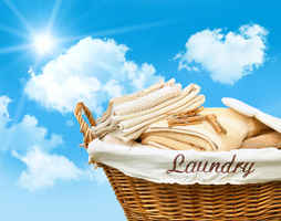 Semi-Absentee Investment: Modernized Coin Laundry