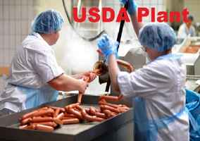 USDA approved food manufacturer plant available