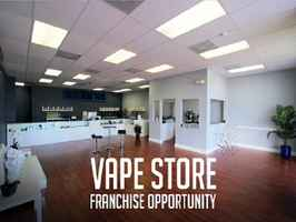 Established E-cigarette Business