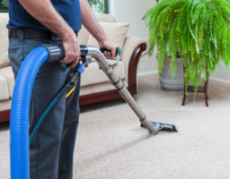 carpet-cleaning-and-related-services-south-carolina