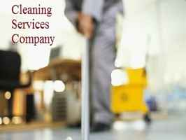 Cash Flowing Cleaning Business Great Tax Returns