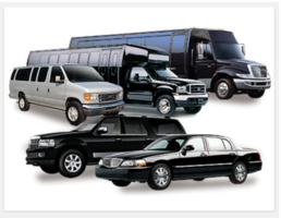 Profitable Shuttle Service
