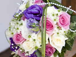 Retail Florist in Central Midlands Area of SC