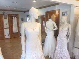 Bridal, Bridesmaid Gowns and Dresses- Asset Sale