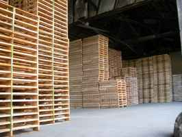 Profitable Pallet Manufacturing & Distribution Co.