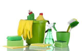 Well Branded Residential Cleaning Biz in Salisbury