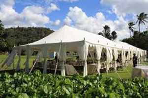 tent-rental-hawaii