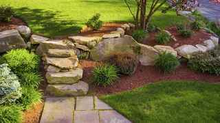 Established Full Service Landscaping Company