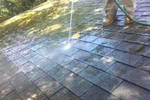 Organic and Green Friendly Roof Moss Cleaning