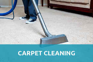 High Profit Carpet Cleaning Business in Upstate SC