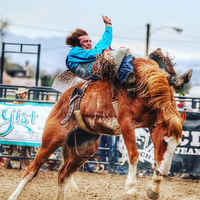 $1M+ Revenue Media Services Company