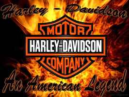 harley-davidsons-pre-owned-dealership-and-apparel-davie-florida