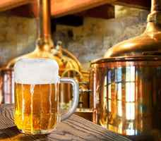 JV or Ownership Opportunities in Brewery Industry