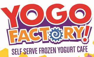 Frozen Yogurt Franchise - Priced to Sell