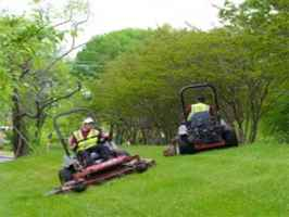 Landscaping Company in DFW, Central & SE TX