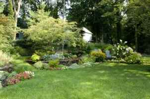Landscaping & Yard Services  - 25232