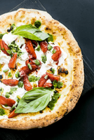 Savannah Pizzeria Restaurant-Well EST-Profitable