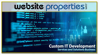 Custom IT Development Services and Solutions Biz