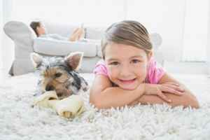 Profitable High-End Carpet Cleaning Business