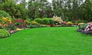 Exceptional Landscape Supplies Distributor