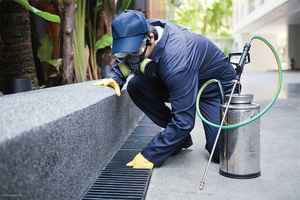 pest-control-business-new-york