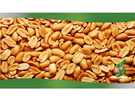 online-gourmet-peanut-processor-north-carolina