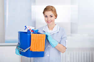 Hi Tech Maid Cleaning Company Motivated Seller