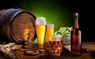 craft-hobby-business-in-beer-sector-princeton-new-jersey