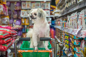 Established Pet Food & Supply Store