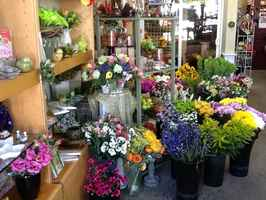 floral-and-gift-shop-lynnwood-washington