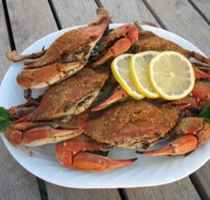 Maryland Crab House-Seafood Bar & Rest.-Carry-Out