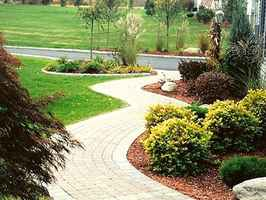 Own a Tree Service and Landscaping business