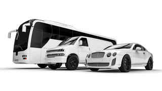 Established Party Bus & Limousine Business