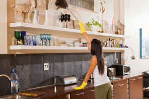 Premier Independent Residential Cleaning Company