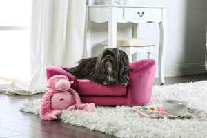 Authorized KozyHome Kid and Pet Furnishings Dealer