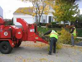 Tree Services Company
