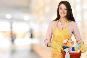 Maid/Janitorial Service - Great Potential