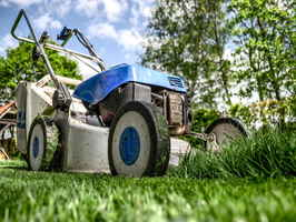 High-Potential Lawn Maintenance Service