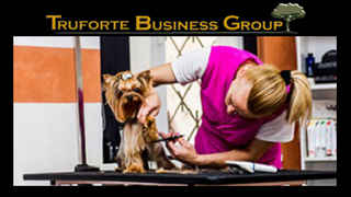 pet-grooming-store-florida