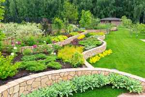 Landscape and Tree Services Company